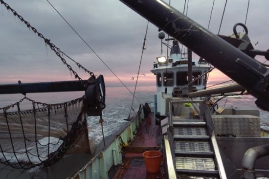 One night with the shrimpers of the North Sea